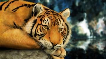 Pubblicato il rapporto Iucn: il 25% dei mammiferi in pericolo
