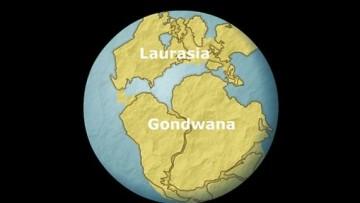 Trovate parti del Gondwana