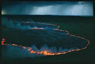 wpid-10482_incendio.jpg