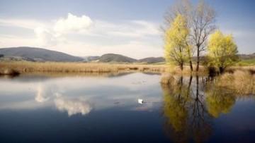 Zone umide: se il turismo va d'accordo con la tutela