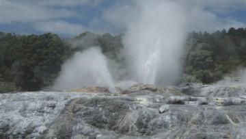 Nei bacini geotermali l'origine della vita