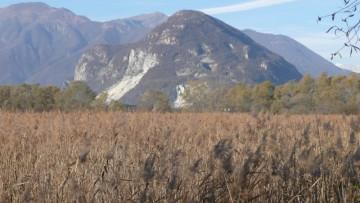 Ecosistemi: i cambiamenti a lungo termine in Italia