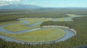 Dinamica morfologica idraulica ed ecologica dei corsi d'acqua
