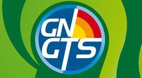 29° Congresso Nazionale del Gruppo Nazionale di Geofisica della Terra Solida
