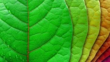 Dagli Stati Generali della Green Economy le 10 misure per la crescita