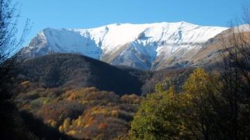 Natura 2000, l'Ue premia la conservazione del patrimonio naturale