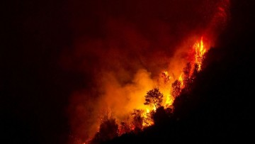 Annuario Istat, incendi in aumento nel 2012