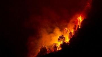 Annuario Istat, incendi in aumento nel 2012