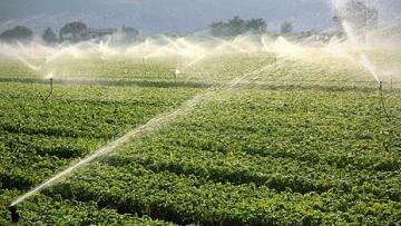Risorse idriche e irrigazione: a che punto siamo in Italia?