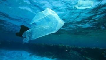 Sacchetti di plastica, in arrivo le sanzioni per chi inquina