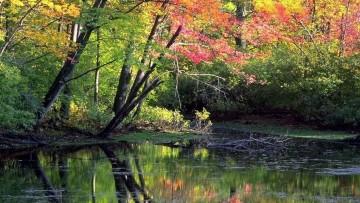 L'Agenda ambientalista per la ri-conversione ecologica del Paese
