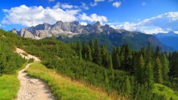 Foreste italiane e CO2: risparmi per 500 milioni di euro