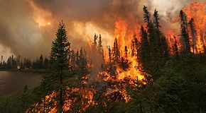Come il riscaldamento globale determinerà l'aumento della frequenza degli incendi