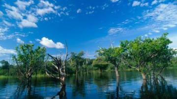 L'intervento diretto dell'uomo sta distruggendo i delta dei fiumi