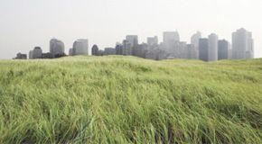"""WWF: ecco i Paesi ai primi posti per le politiche """"verdi"""""""