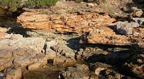 wpid-3828_geologia.jpg