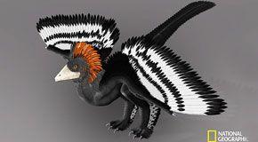 Yale svela i colori dei dinosauri