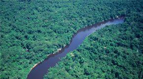 Trovata in Amazzonia una falda acquifera grande come il Mediterraneo