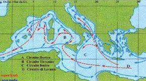 Fra Adriatico e Ionio un'interazione che cambia ogni 10 anni
