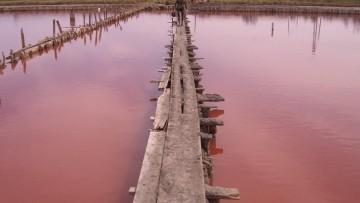 Il fango killer raggiunge il Danubio