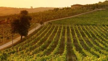 Nato il Portale dei Geopaesaggi della Regione Toscana