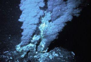 Nuove sorgenti vulcaniche sottomarine nell'Atlantico
