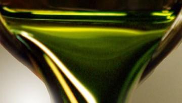 Italia e Argentina per il biodiesel da alghe marine