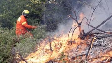 Lotta agli incendi boschivi: il progetto Proterina-C