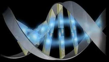 Dall'archeologia genetica novità sulla storia dell'uomo