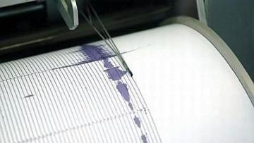 Terremoti: gli animali possono davvero predirli?