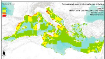 Abbiamo una 'mappa' del rumore subacqueo del Mediterraneo. Ed è allarmante